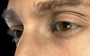 Detailed Spatio-Temporal Reconstruction of Eyelids