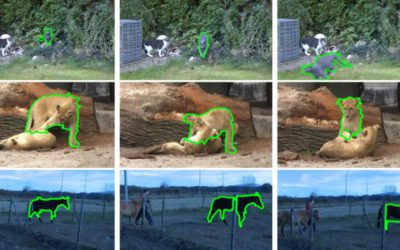 Fully Connected Object Proposals For Video Segmentation