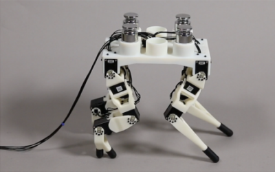 Joint Optimization of Robot Design and Motion Parameters using the Implicit Function Theorem