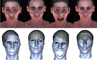 Rigid Stabilization of Facial Expressions