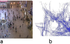 Trending Paths: A Metric for Evaluating Crowd Simulation