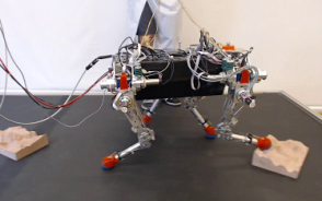 Control of Dynamic Gaits for a Quadrupedal Robot