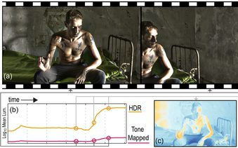 Temporally Coherent Local Tone Mapping of HDR Video