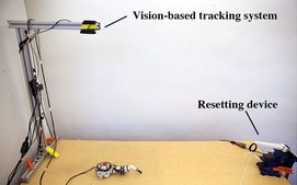 Automated Deep Reinforcement Learning Environment for Hardware of a Modular Legged Robot