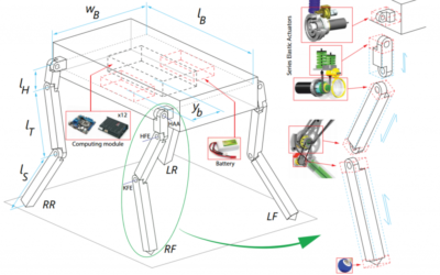 Concurrent Optimization of Mechanical Design and Locomotion Control of a Legged Robot