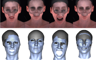 Rigid Stabilization of Facial Expressions