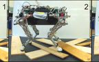 Towards Automatic Discovery of Agile Gaits for Quadrupedal Robots